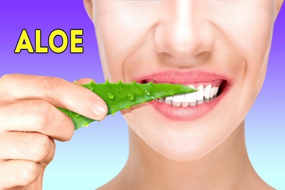 aloe vera para cuidar la dentadura
